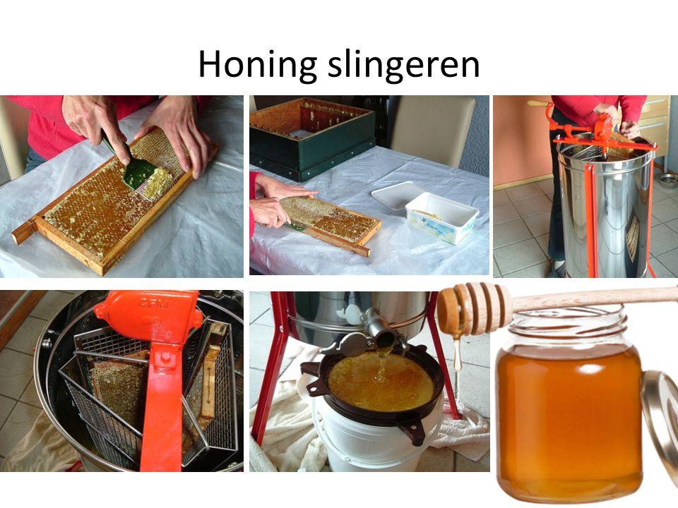 Honing slingeren