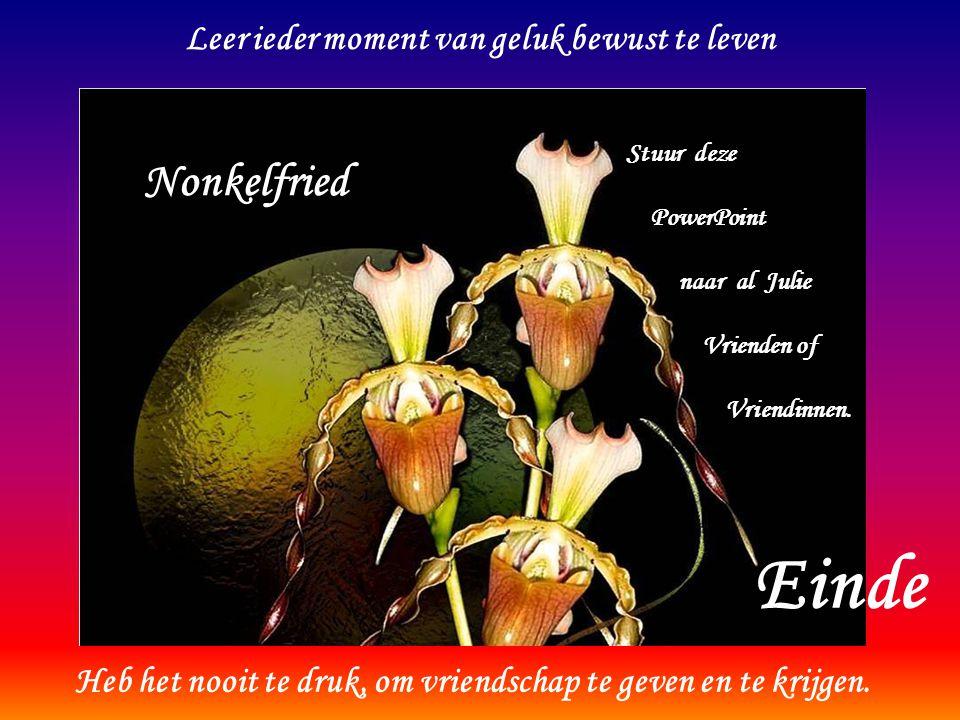 Einde Nonkelfried Leer ieder moment van geluk bewust te leven