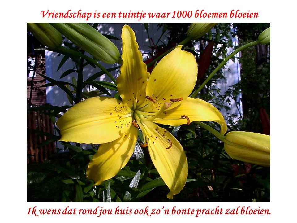 Vriendschap is een tuintje waar 1000 bloemen bloeien