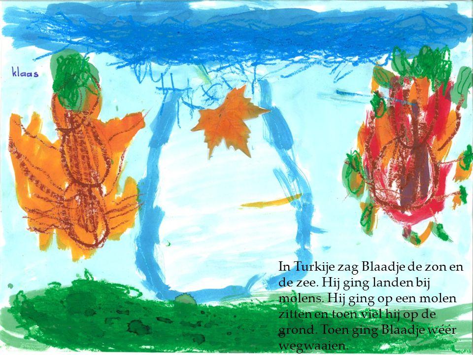 In Turkije zag Blaadje de zon en de zee. Hij ging landen bij molens