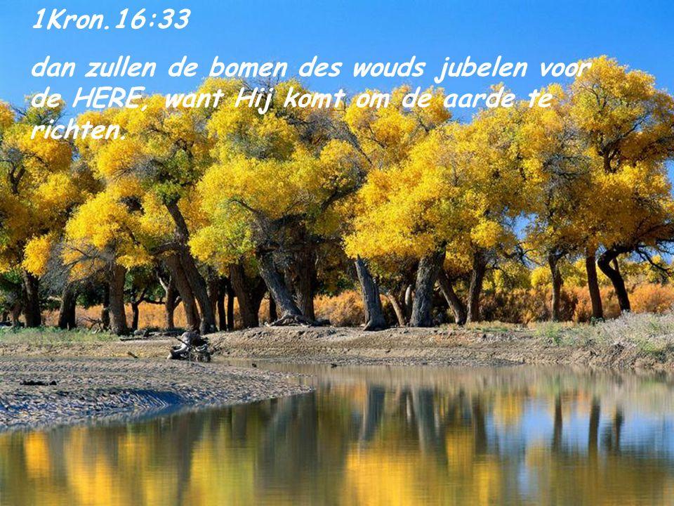 1Kron.16:33 dan zullen de bomen des wouds jubelen voor de HERE, want Hij komt om de aarde te richten.