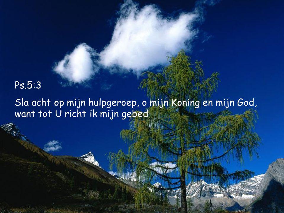 Ps.5:3 Sla acht op mijn hulpgeroep, o mijn Koning en mijn God, want tot U richt ik mijn gebed