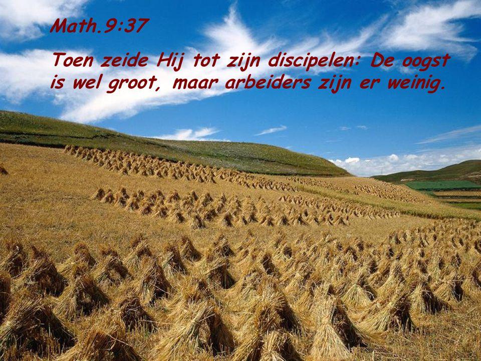 Math.9:37 Toen zeide Hij tot zijn discipelen: De oogst is wel groot, maar arbeiders zijn er weinig.