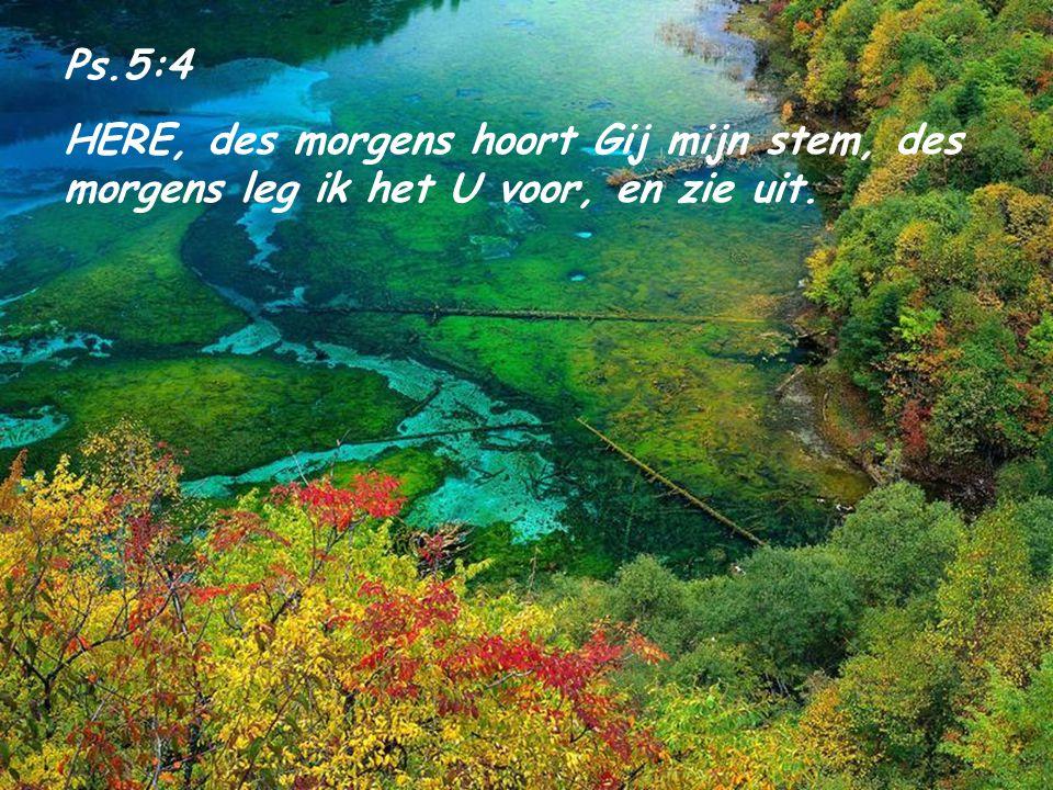Ps.5:4 HERE, des morgens hoort Gij mijn stem, des morgens leg ik het U voor, en zie uit.
