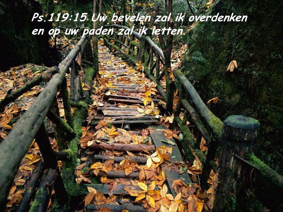 Ps.119:15 Uw bevelen zal ik overdenken en op uw paden zal ik letten.