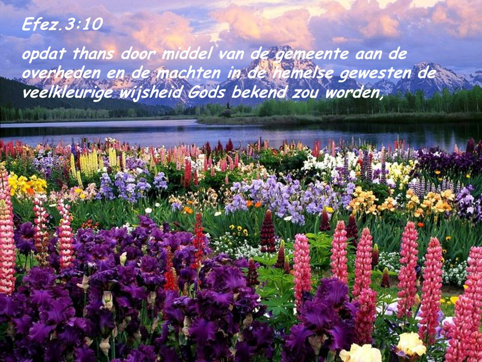 Efez.3:10