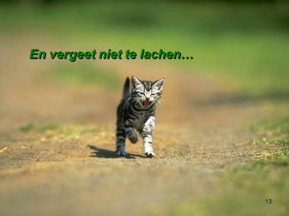 En vergeet niet te lachen…