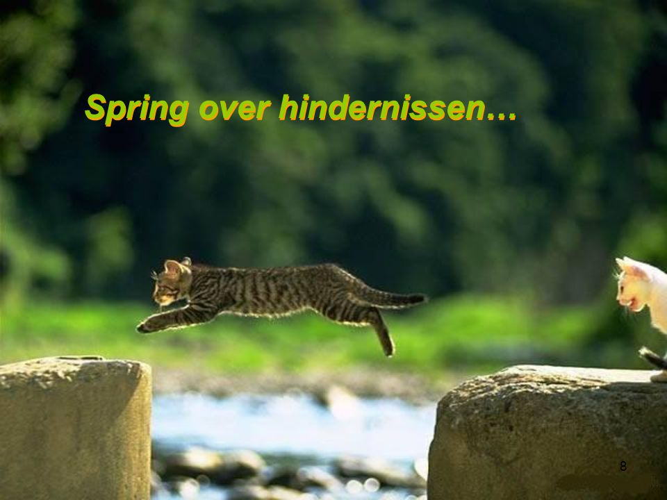 Spring over hindernissen…