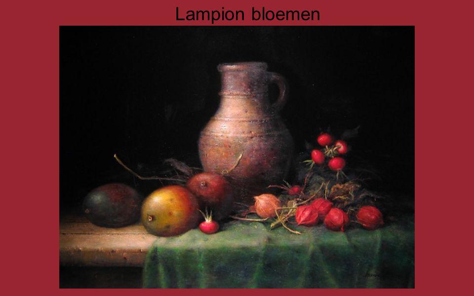 Lampion bloemen
