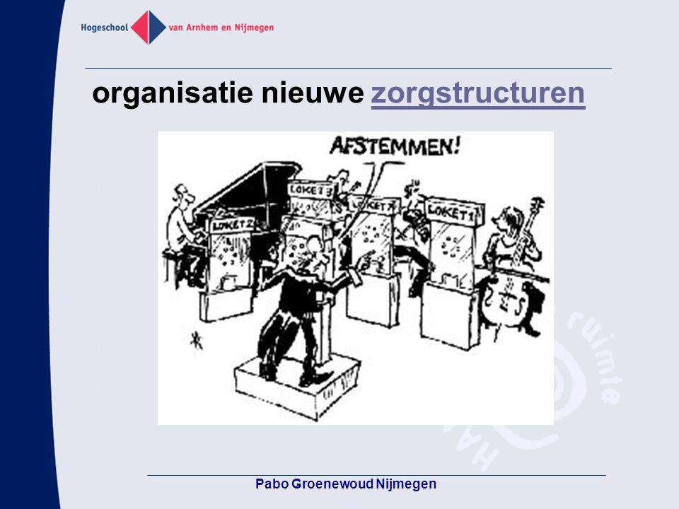 organisatie nieuwe zorgstructuren