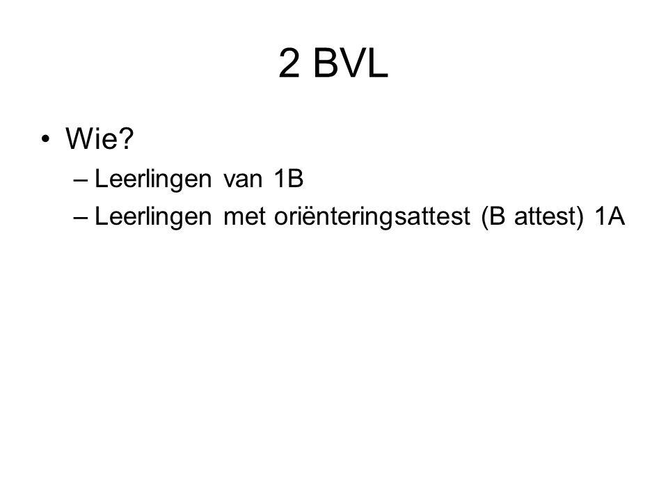 2 BVL Wie Leerlingen van 1B
