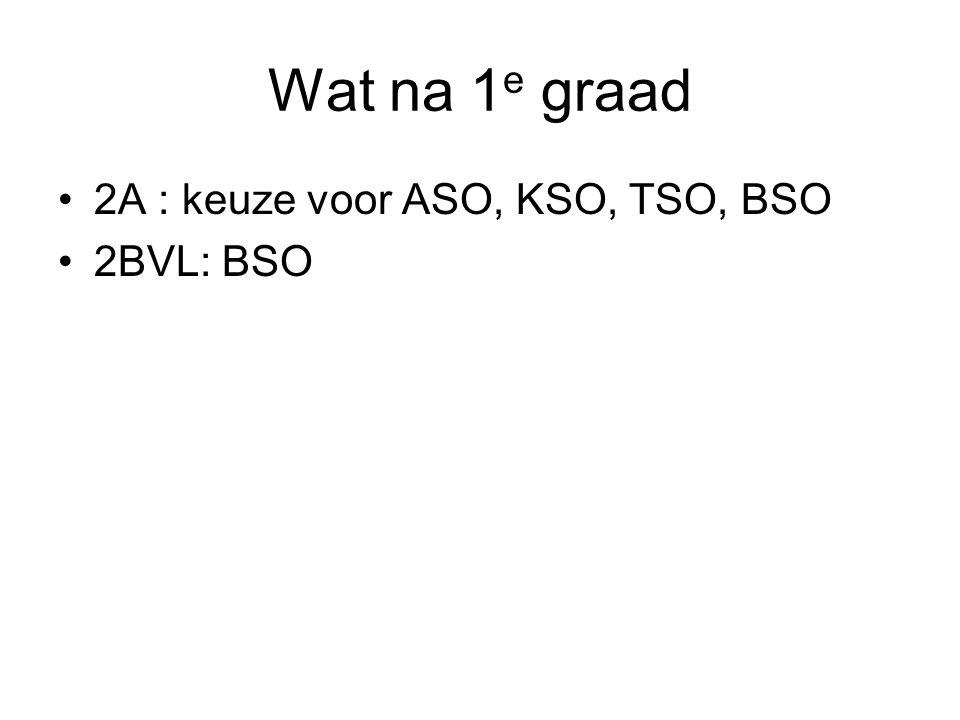 Wat na 1e graad 2A : keuze voor ASO, KSO, TSO, BSO 2BVL: BSO