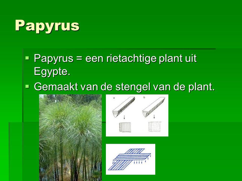 Papyrus Papyrus = een rietachtige plant uit Egypte.