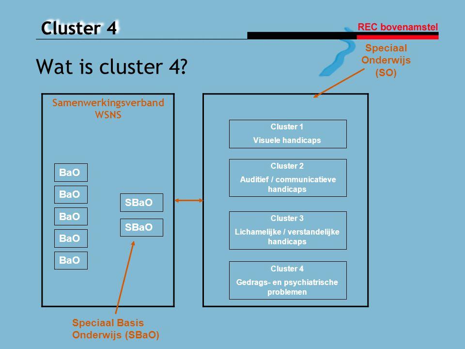 Wat is cluster 4 Speciaal Onderwijs (SO) Samenwerkingsverband WSNS