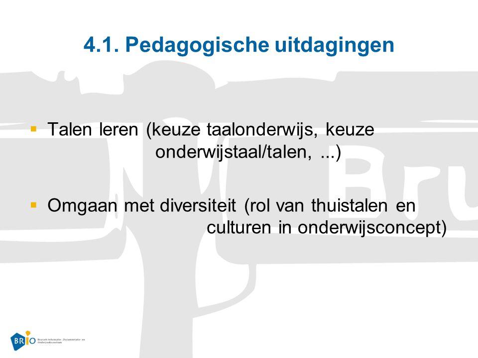 4.1. Pedagogische uitdagingen