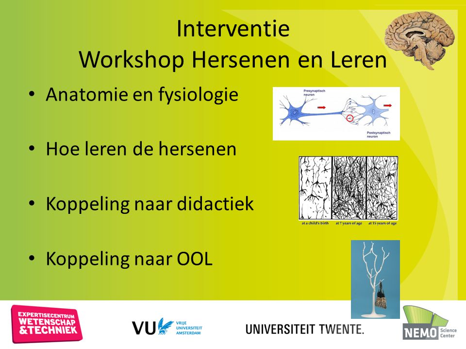 Interventie Workshop Hersenen en Leren