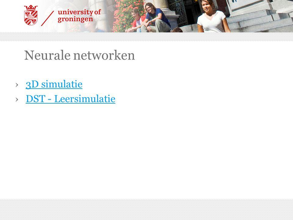 Neurale networken 3D simulatie DST - Leersimulatie
