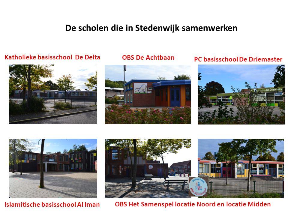 De scholen die in Stedenwijk samenwerken