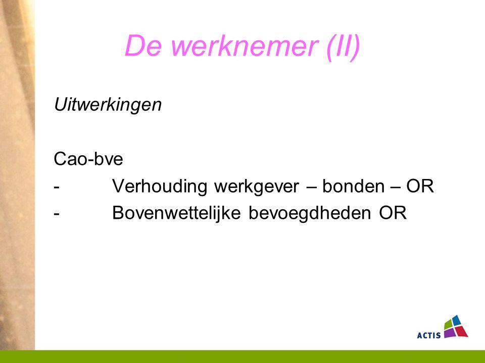 De werknemer (II) Uitwerkingen Cao-bve