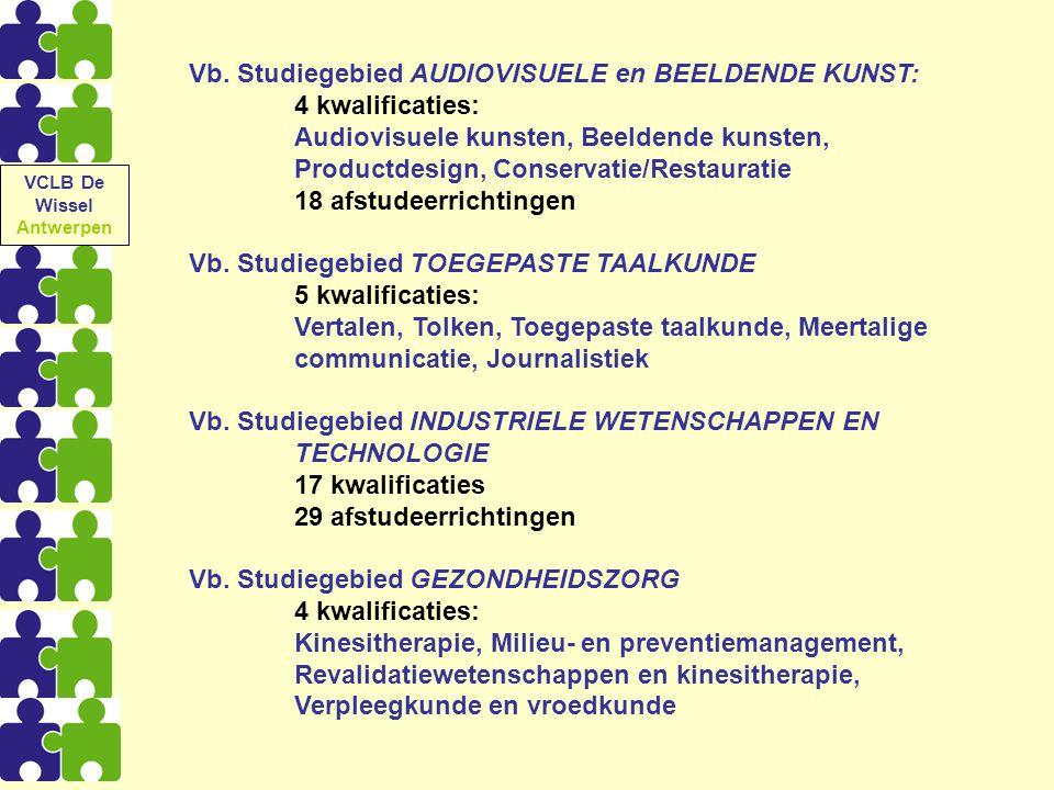 Vb. Studiegebied AUDIOVISUELE en BEELDENDE KUNST: 4 kwalificaties: