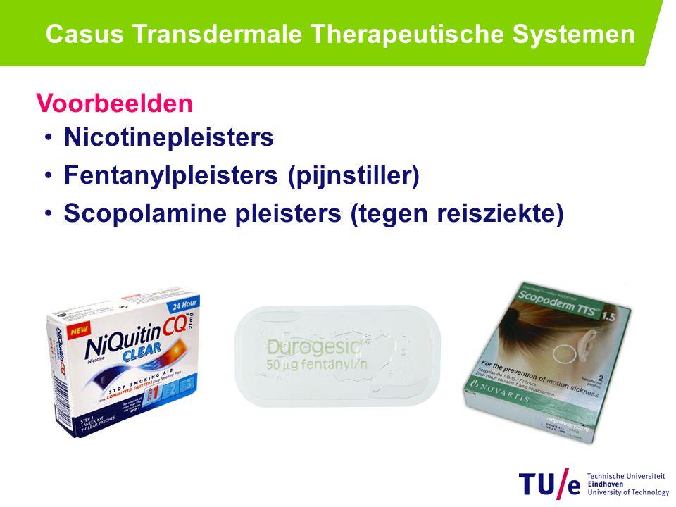 Casusomschrijving Brainstormen over Transdermale Therapeutische Systemen (TTS) Bordschrijver en voorzitter.