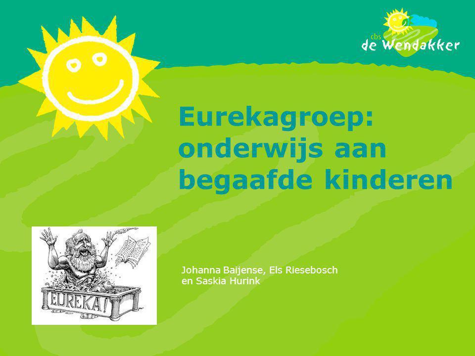 Eurekagroep: onderwijs aan begaafde kinderen