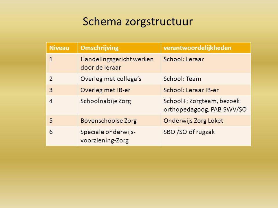 Schema zorgstructuur Niveau Omschrijving verantwoordelijkheden 1
