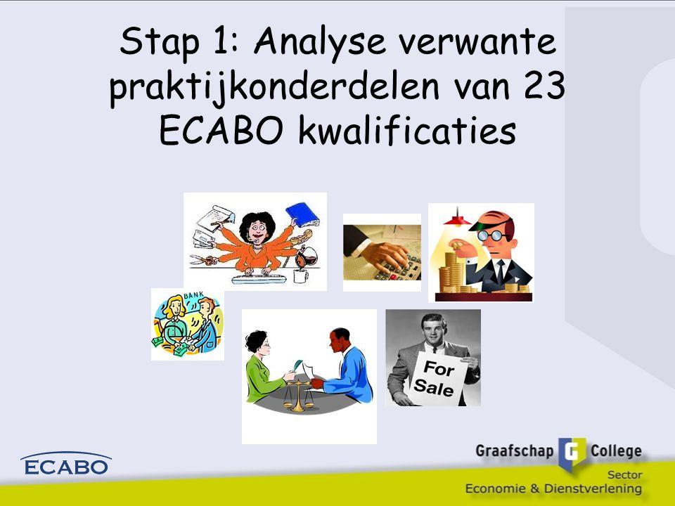 Stap 1: Analyse verwante praktijkonderdelen van 23 ECABO kwalificaties