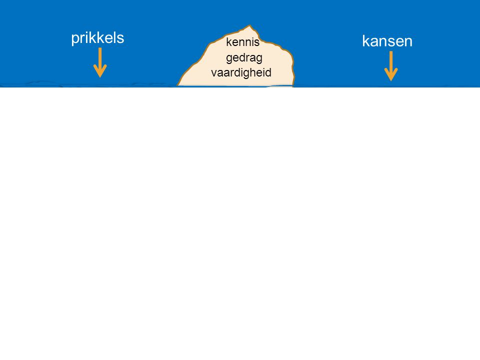 prikkels kansen kennis gedrag vaardigheid competentie leervermogen