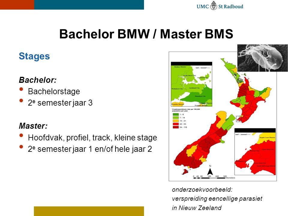 Bachelor BMW / Master BMS
