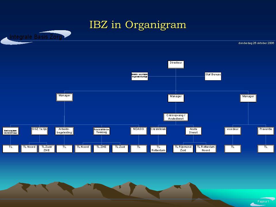 IBZ in Organigram
