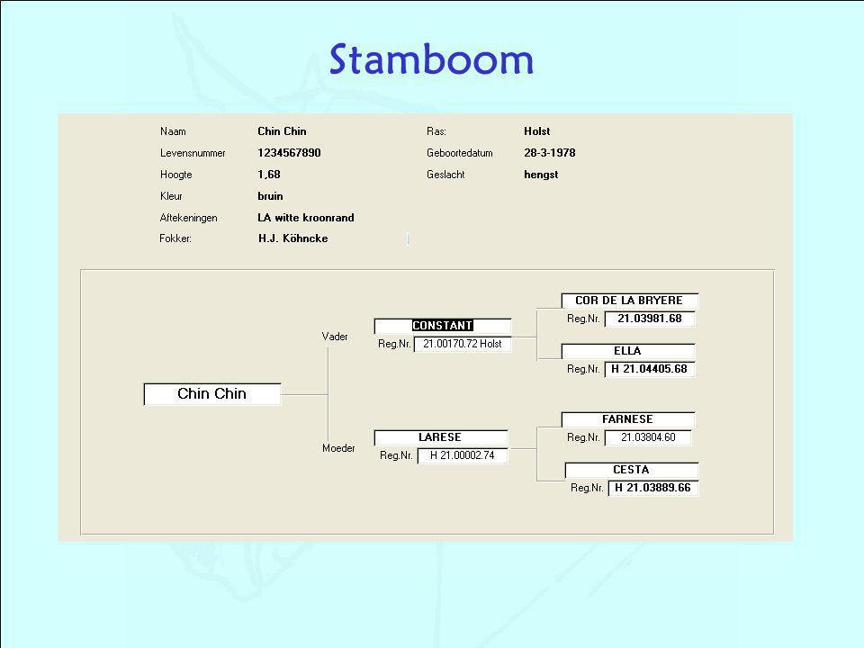 Stamboom