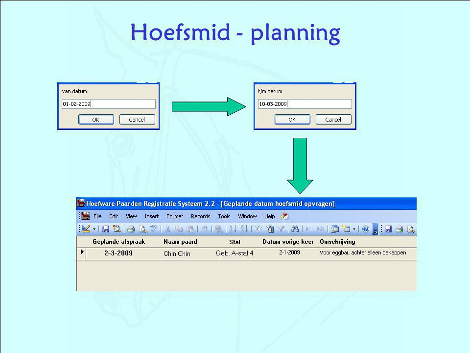 Hoefsmid - planning