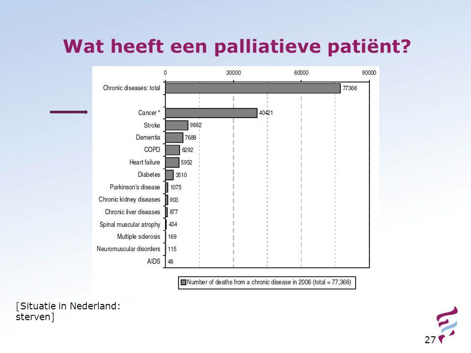 Wat heeft een palliatieve patiënt