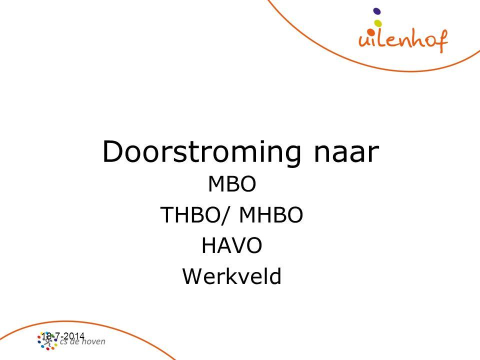 MBO THBO/ MHBO HAVO Werkveld
