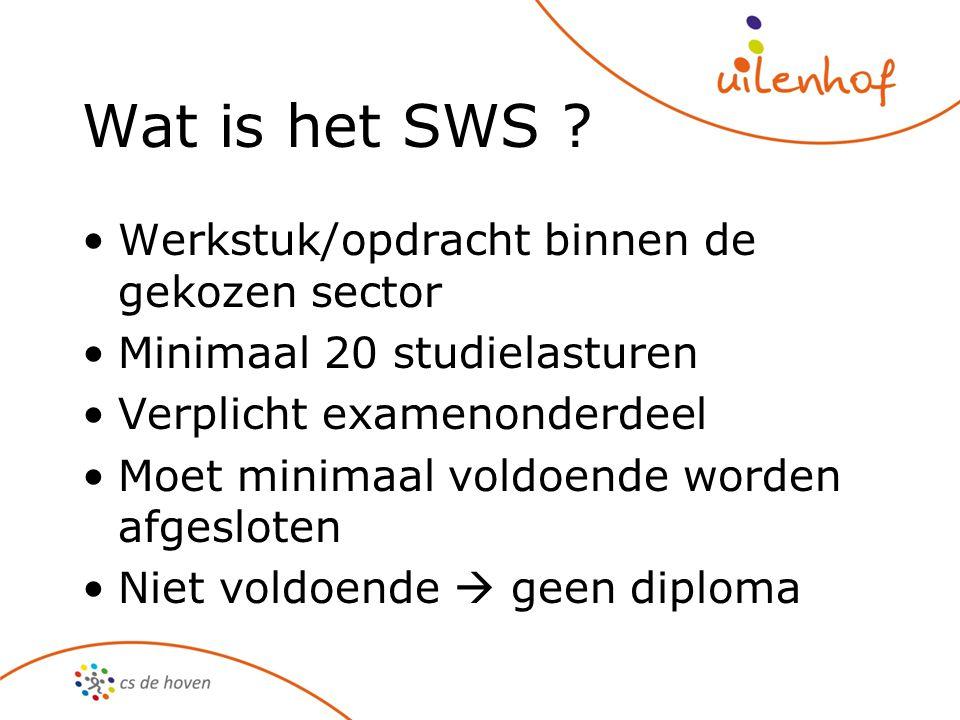 Wat is het SWS Werkstuk/opdracht binnen de gekozen sector