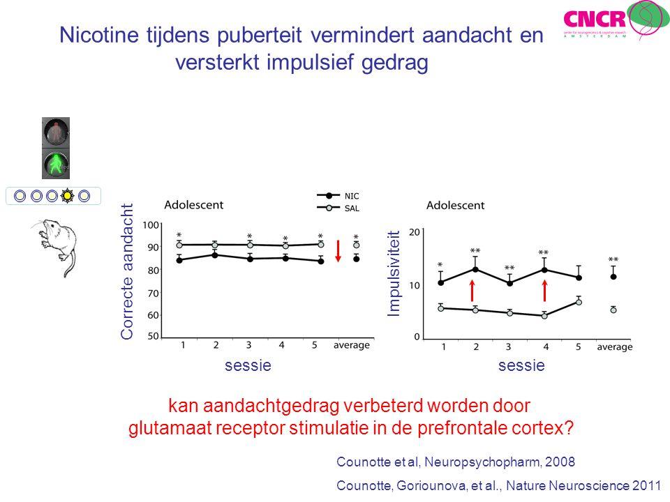 Nicotine tijdens puberteit vermindert aandacht en versterkt impulsief gedrag