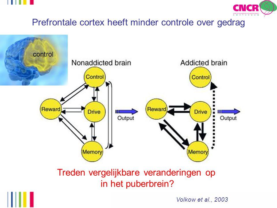 Prefrontale cortex heeft minder controle over gedrag