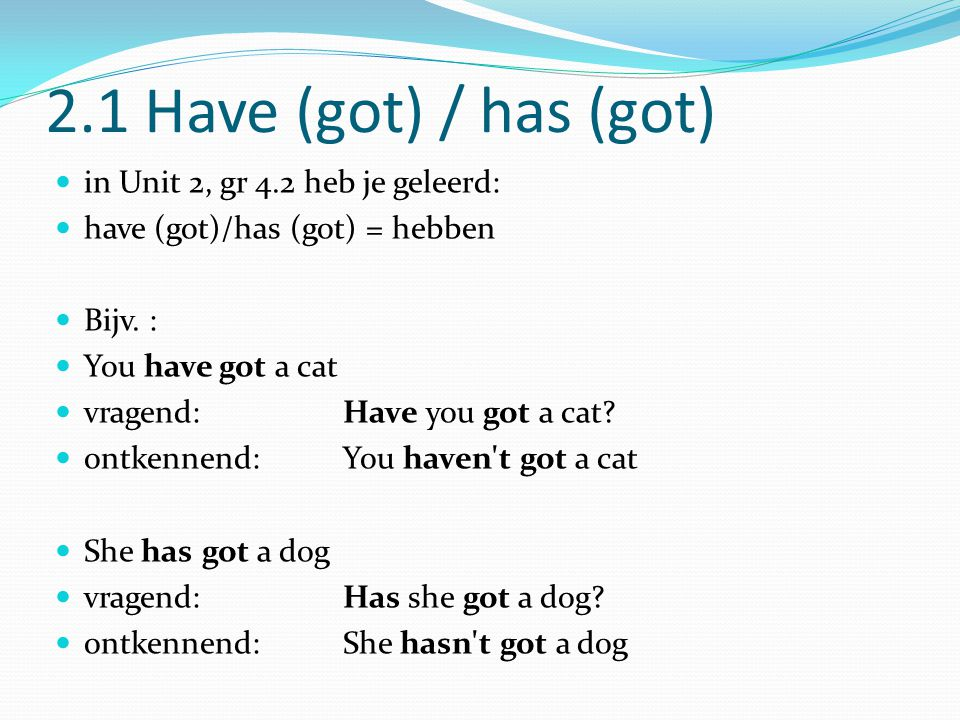 2.1 Have (got) / has (got) in Unit 2, gr 4.2 heb je geleerd: