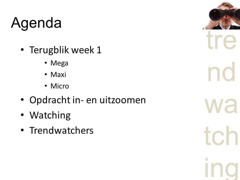 Agenda Terugblik week 1 Opdracht in- en uitzoomen Watching