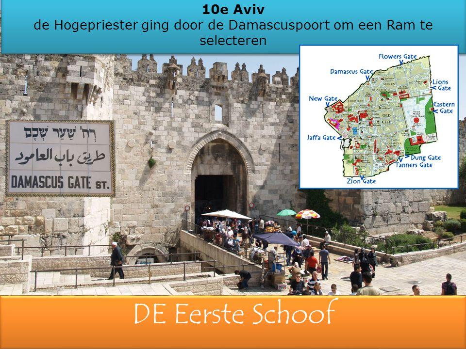 10e Aviv de Hogepriester ging door de Damascuspoort om een Ram te selecteren