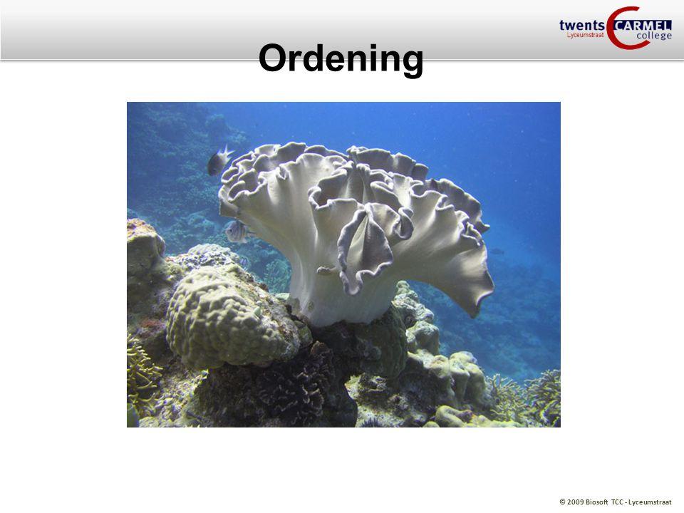 Ordening