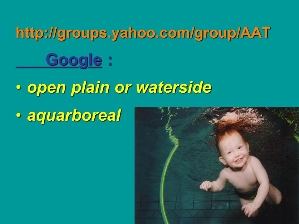 open plain or waterside aquarboreal