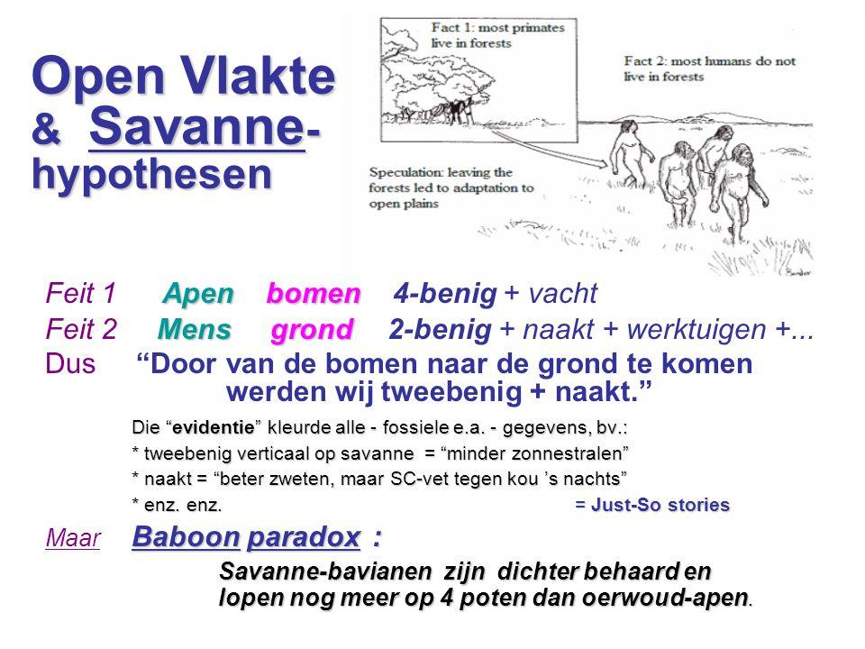 Open Vlakte & Savanne- hypothesen