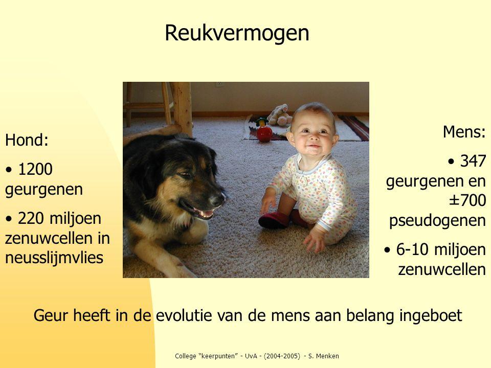Reukvermogen Mens: Hond: 347 geurgenen en ±700 pseudogenen