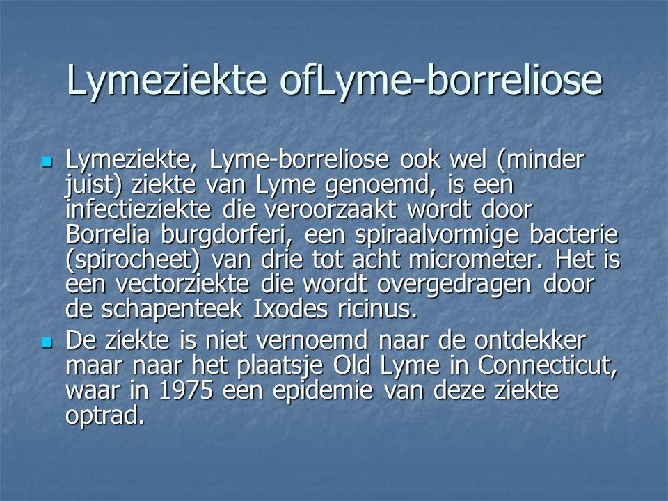 Lymeziekte ofLyme-borreliose