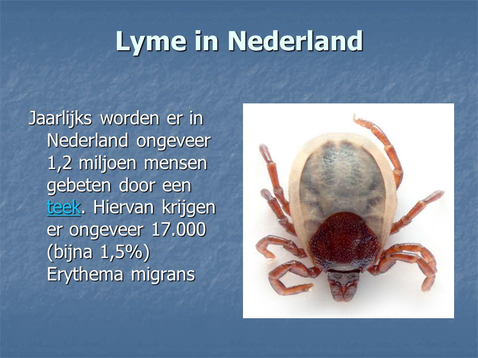 Lyme in Nederland