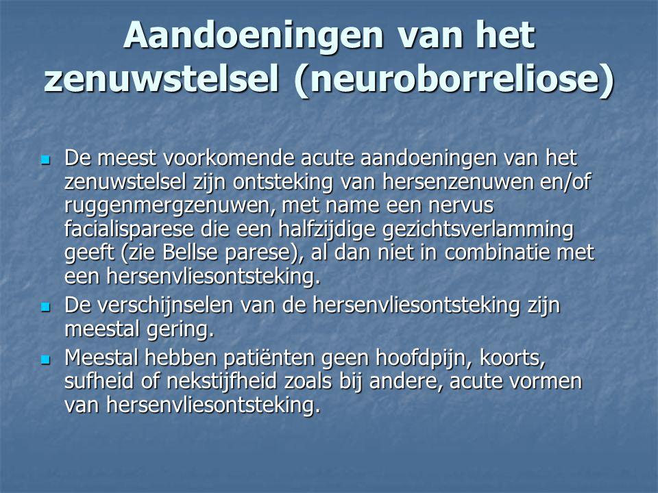 Aandoeningen van het zenuwstelsel (neuroborreliose)