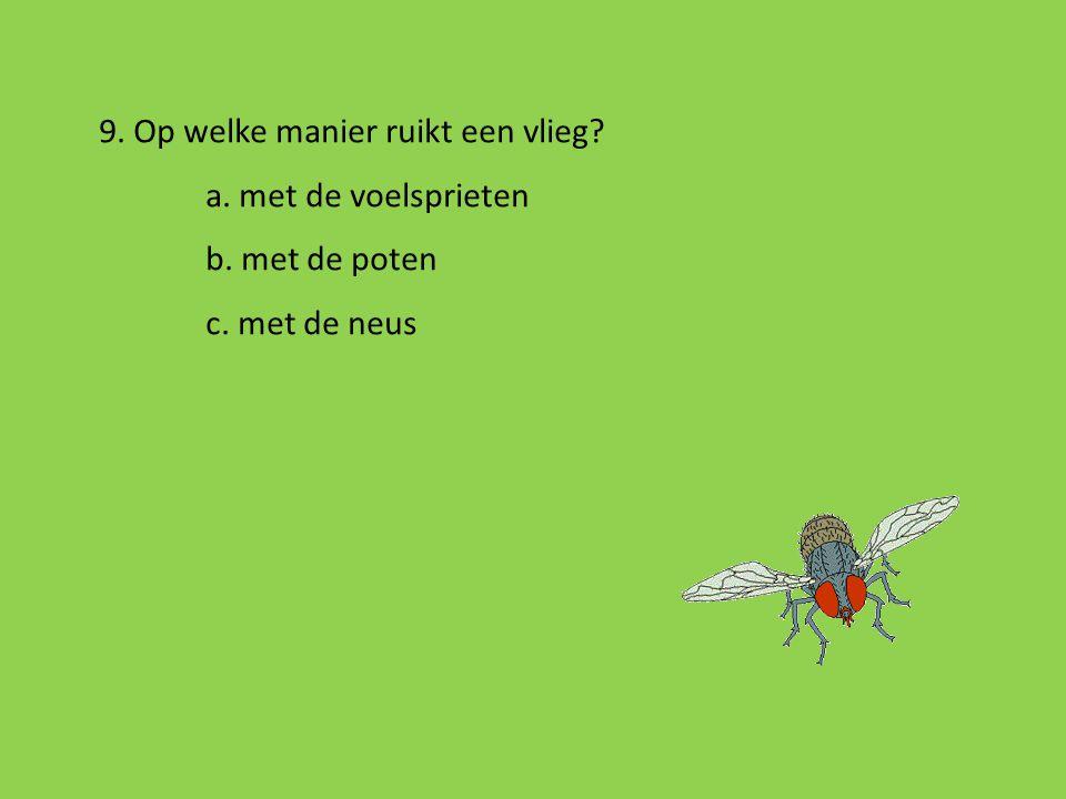 9. Op welke manier ruikt een vlieg