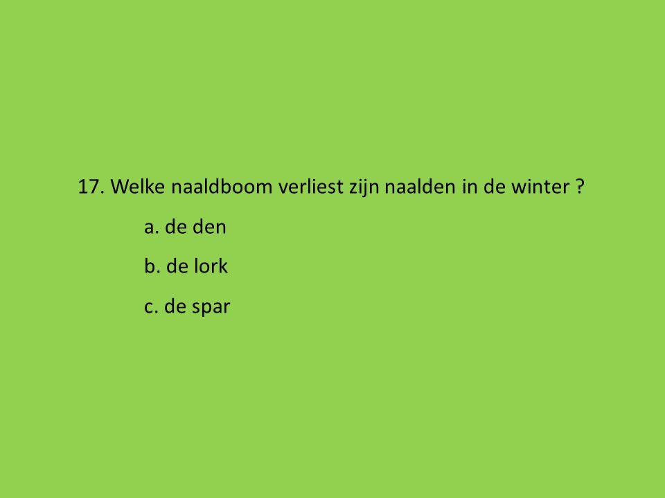 17. Welke naaldboom verliest zijn naalden in de winter